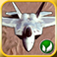 Flight Deck App Icon
