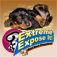 Extreme Expose It! Bad Bad Doggie! App Icon
