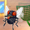 Fly Killer app icon