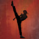 The Karate Kid app icon
