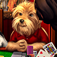 Dogs Playing Poker Free iOS Icon