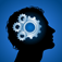 Who is the Smartest? (WITS) Vocabulary iOS Icon