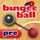 Bungee Ball Pro App Icon
