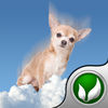Tinkerbell Drop iOS Icon