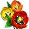 Flower Shop Big City Break App Icon