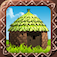 Raise The Village app icon