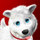 Touch Pets Dogs 2 app icon