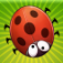 Bugfest app icon