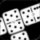 Real Domino App Icon