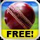 Cricket WorldCup Fever iOS Icon