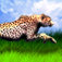 Legend of Cheetah app icon