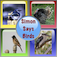 Simon Says Birds iOS Icon