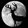Night Hunter App Icon