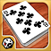 Crazy Eights App Icon