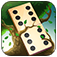 Domino Solitaire App Icon