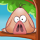 Pigs in Trees app icon