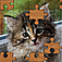 Jigsaw Puzzles iOS Icon