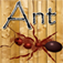 Ant Crusher Game HD app icon