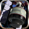 STEINS;GATE App Icon