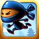 Ninja Ponk iOS Icon