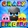 Crazy Birdies app icon
