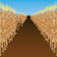 Corn Mazes App Icon