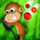 Jungle Monkey app icon