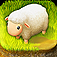Tiny Sheep iOS Icon