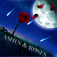 Ashes & Roses App Icon