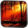 Redwoods Adventure app icon