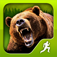 Survival Run with Bear Grylls App Icon