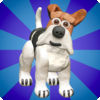 Agility Dogs app icon