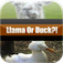 Llama Or Duck? app icon