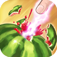 Amazing Fruit Dash App Icon