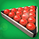 Pro Snooker 2012 iOS icon