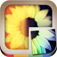 InstaPuz - Foto-Puzzles for Instagram iOS Icon
