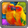 HexLogic - Birds app icon