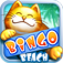 Bingo Beach App Icon