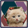 HexSaw - Kittens app icon
