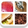Close Up Pics – Guess the Word from the Zoomed In Photo Quiz iOS Icon