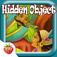 Hidden Object Game iOS Icon