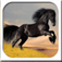 A Pet Horse Maker Booth app icon