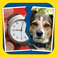 2 Pics 1 Phrase Word Game app icon
