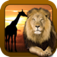 Shape Game Wildlife Photo app icon