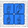 ASL Word Search iOS Icon