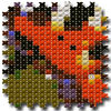 Cross Stitching Butterfly App Icon