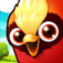 Birzzle Fever iOS Icon