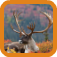 Caribou Hunting app icon