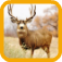 Mule Deer Hunting app icon