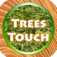 Trees Quiz Touch App Icon
